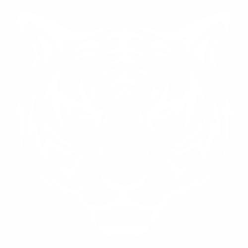 Тигр - 2