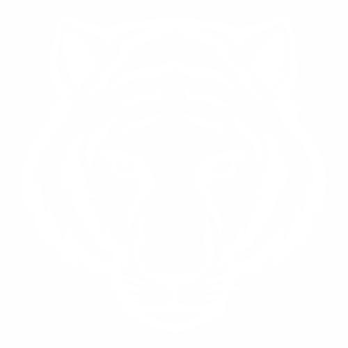 Тигр - 3