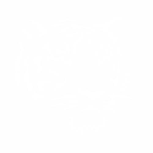 Тигр - 4