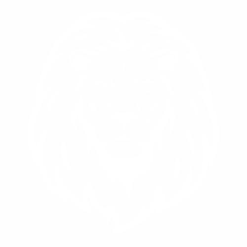 Тигр - 5