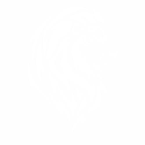 Тигр - 6