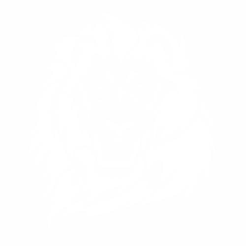Тигр - 7