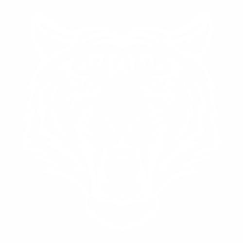 Тигр - 8