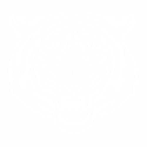 Тигр - 9