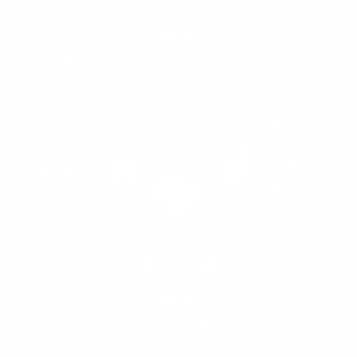 Тигр - 10