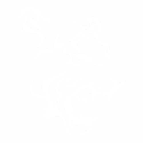 Тигр - 11