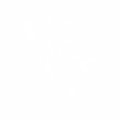 Тигр - 14
