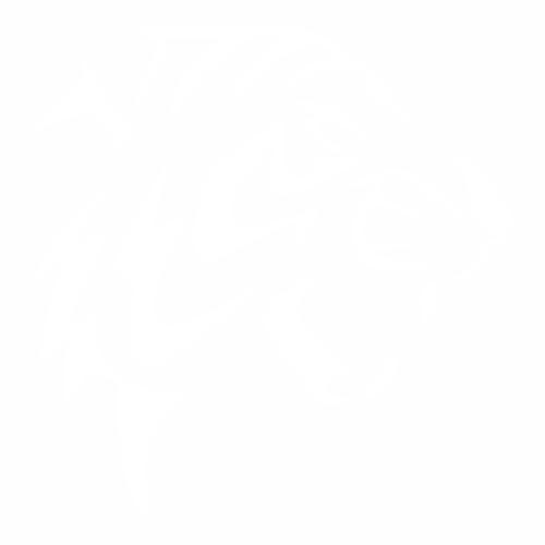 Тигр - 15