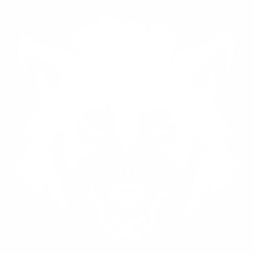 Волк - 4