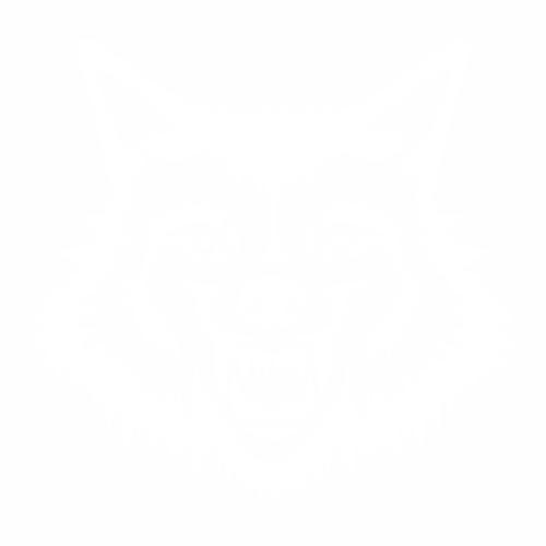 Волк - 5
