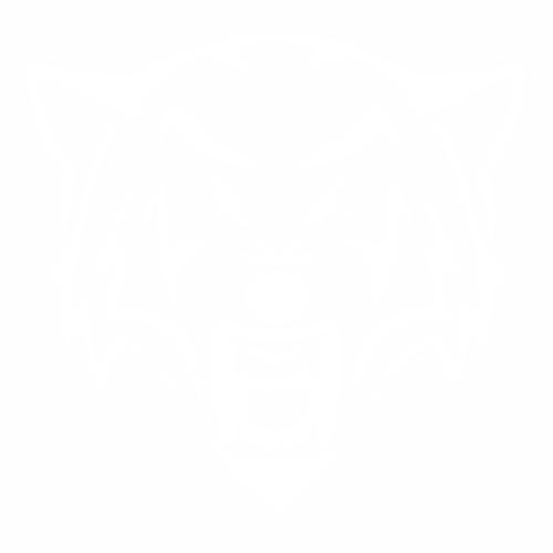 Волк - 6