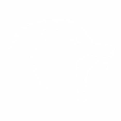 Волк - 8