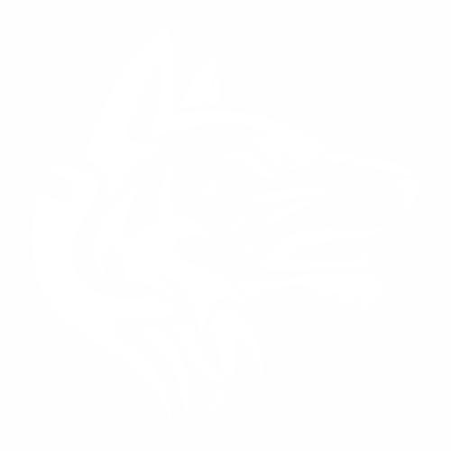 Волк - 10