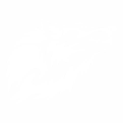Волк - 11