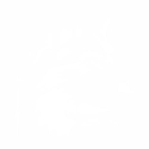 Волк - 12