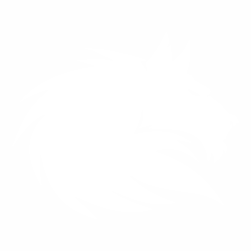 Волк - 13