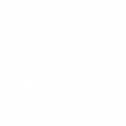Волк - 14