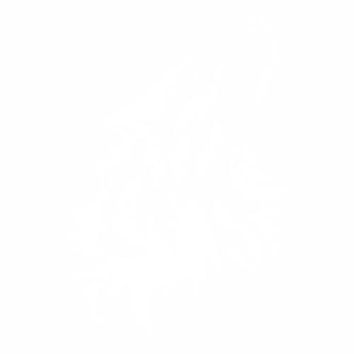 Волк - 15