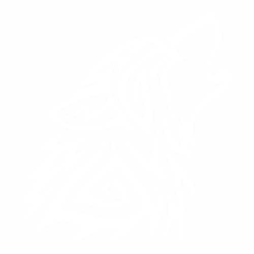 Волк - 16