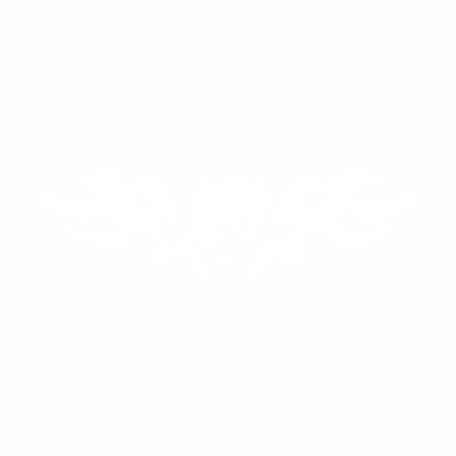 Волк - 18