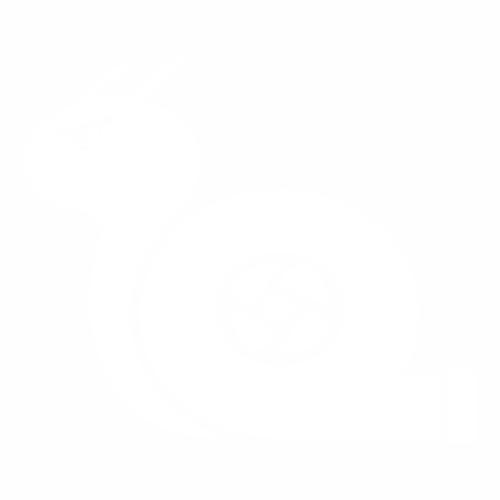 Улитка - 5