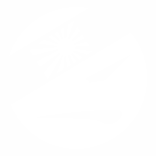 JDM kamikaze