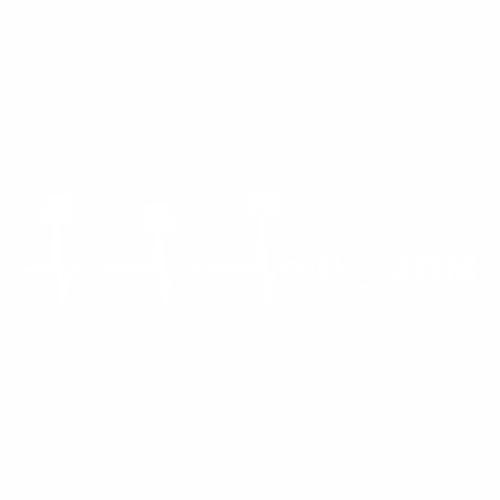 JDM - 33
