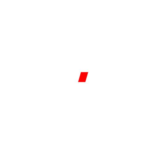Наклейка AUDI SPORT