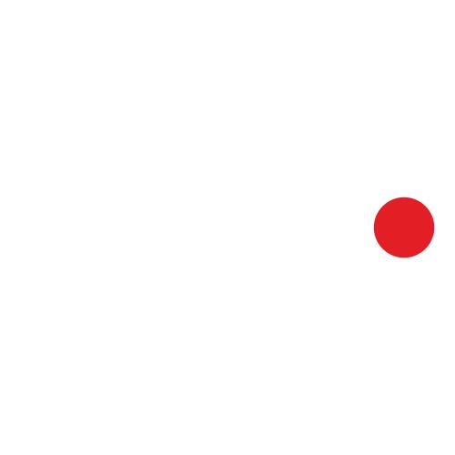 Nismo 1