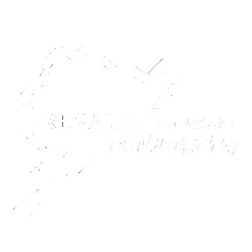 Наклейка Renault Sport Nurburgring