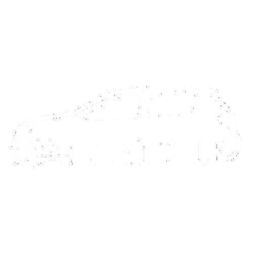Наклейка Sandero Club