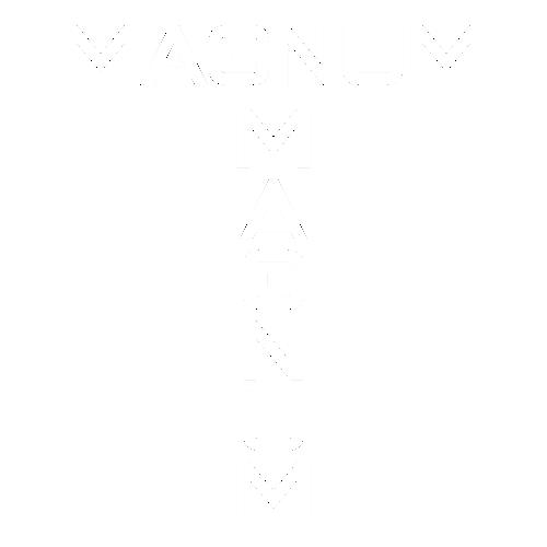 Наклейка Renault Magnum