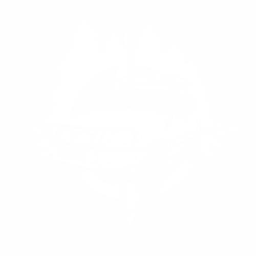 Нива - 9