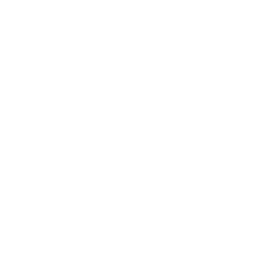 V RS - 4