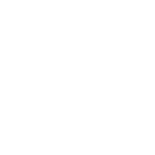 Toyota Devil logo - 2