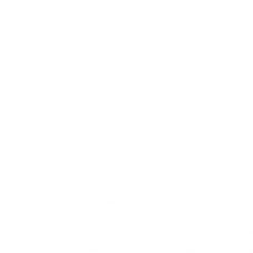 URAL SOUND TEAM