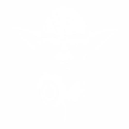 Йода - 3
