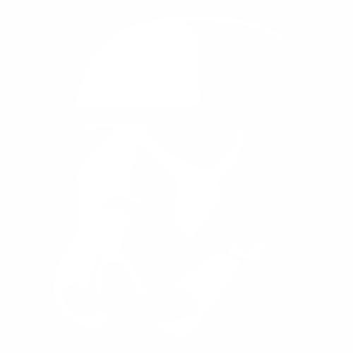 Штурмовик - 6