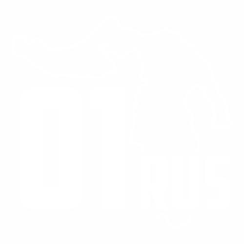 01 Регион - №3