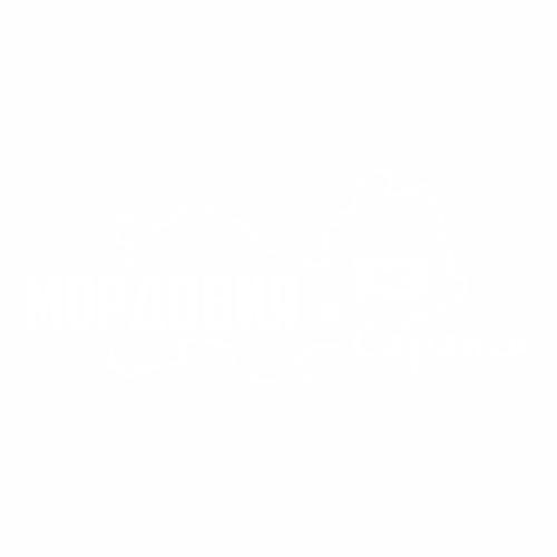 13 Регион - №1