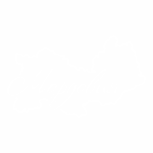 13 Регион - №2