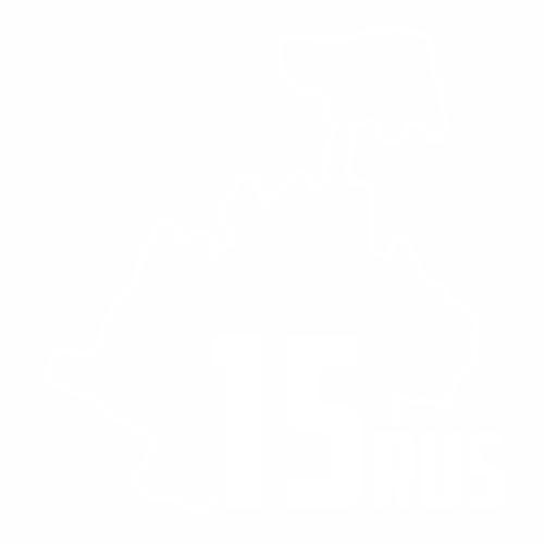 15 Регион - №3