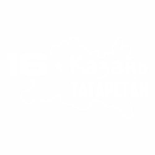 16 Регион - №1