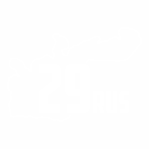 29 Регион - №3