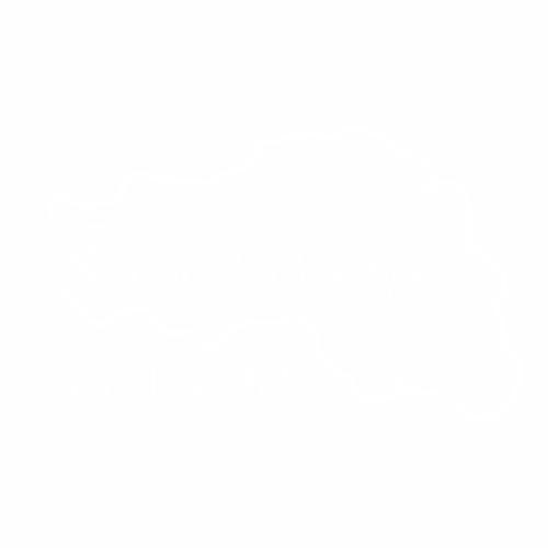 31 Регион - №2