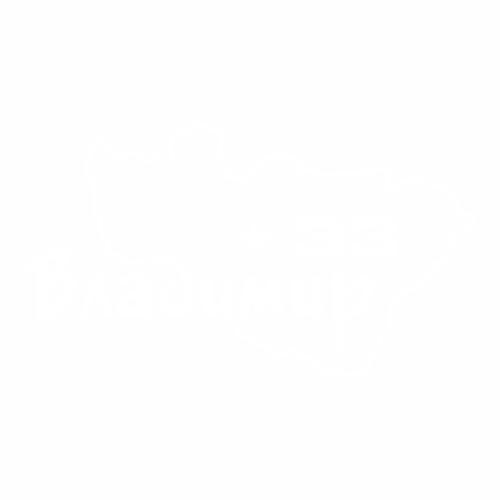 33 Регион - №1