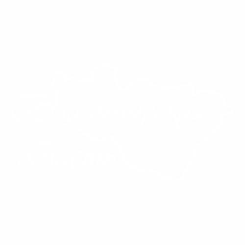 33 Регион - №2