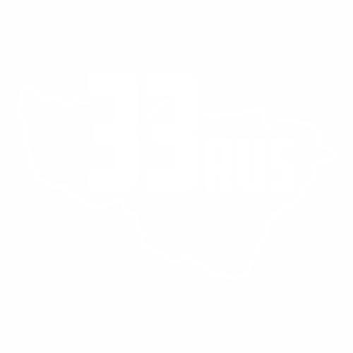 33 Регион - №3
