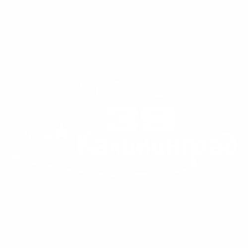39 Регион - №1