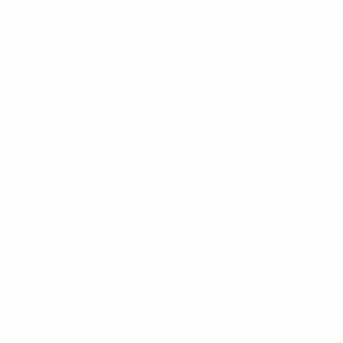 41 Регион - №2